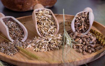 I cereali antichi e la nascita dei prodotti Waldkorn